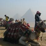 Ägypten (7)